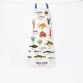 Schort sea life